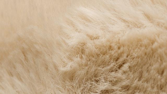 Witte schapenvachten